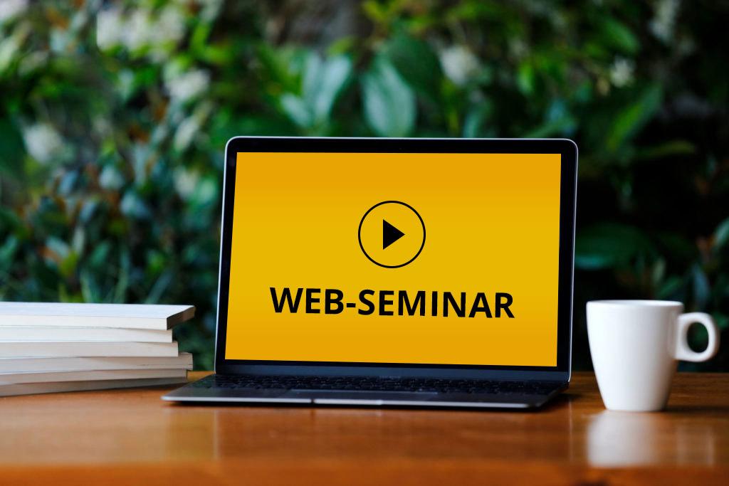 Web-Seminar
